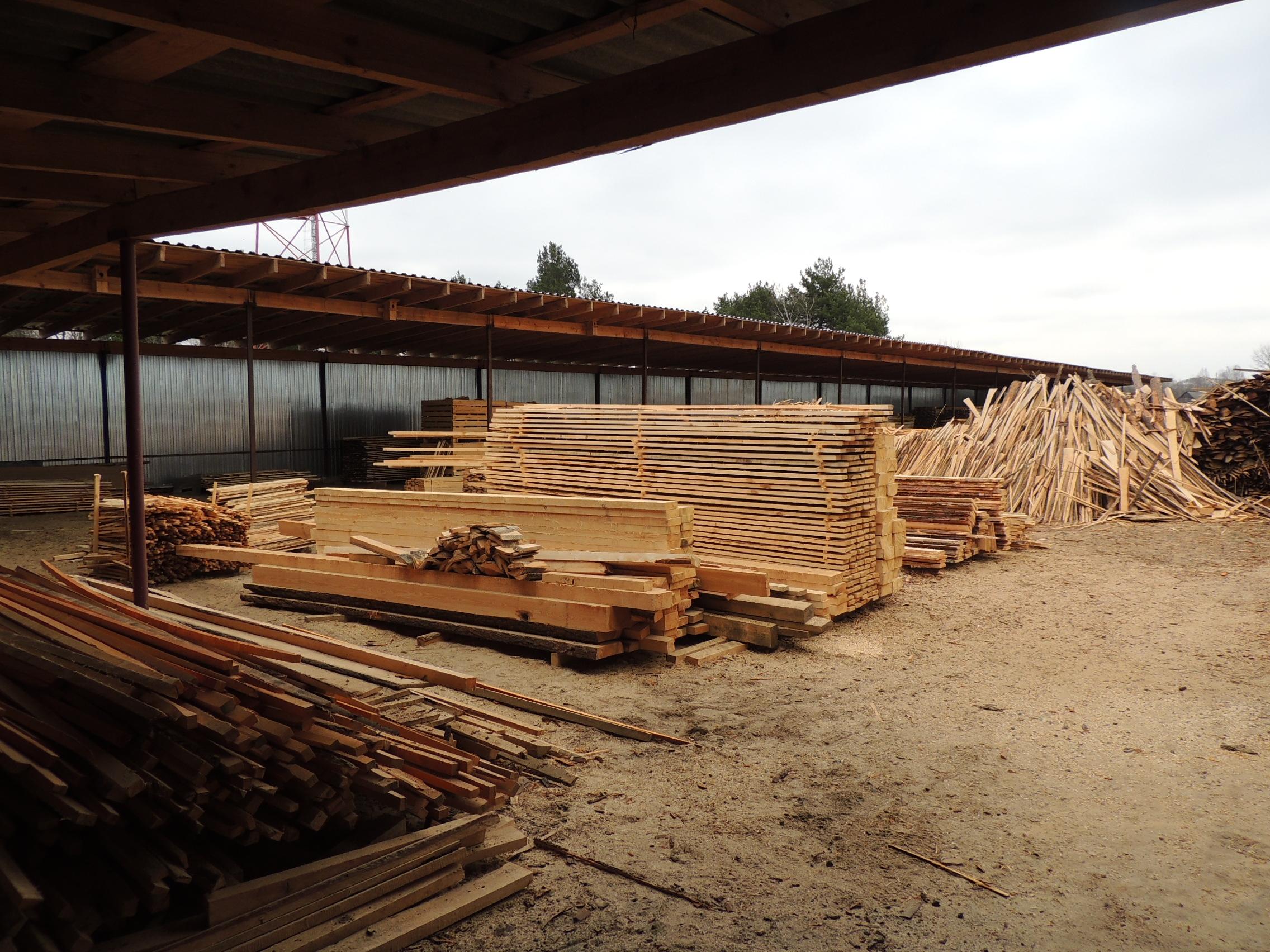 Бизнес план распиловка леса бизнес план платежный терминал