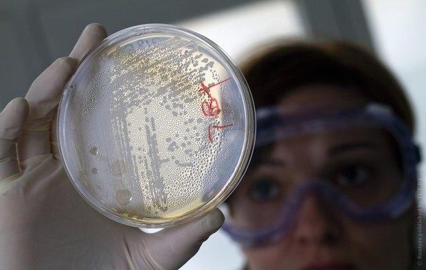 Ученые обнаружили новейшую устойчивую кантибиотикам бактерию