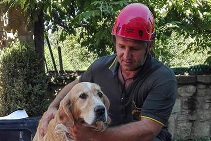 Очередной гражданин Аматриче спасся под завалами после землетрясения