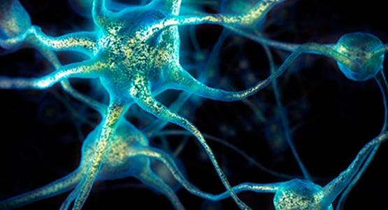Ученые сообщили, как освободиться от нехороших воспоминаний