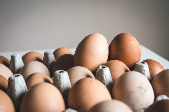 20 тонн отравленных куриных яиц реализовано вДании