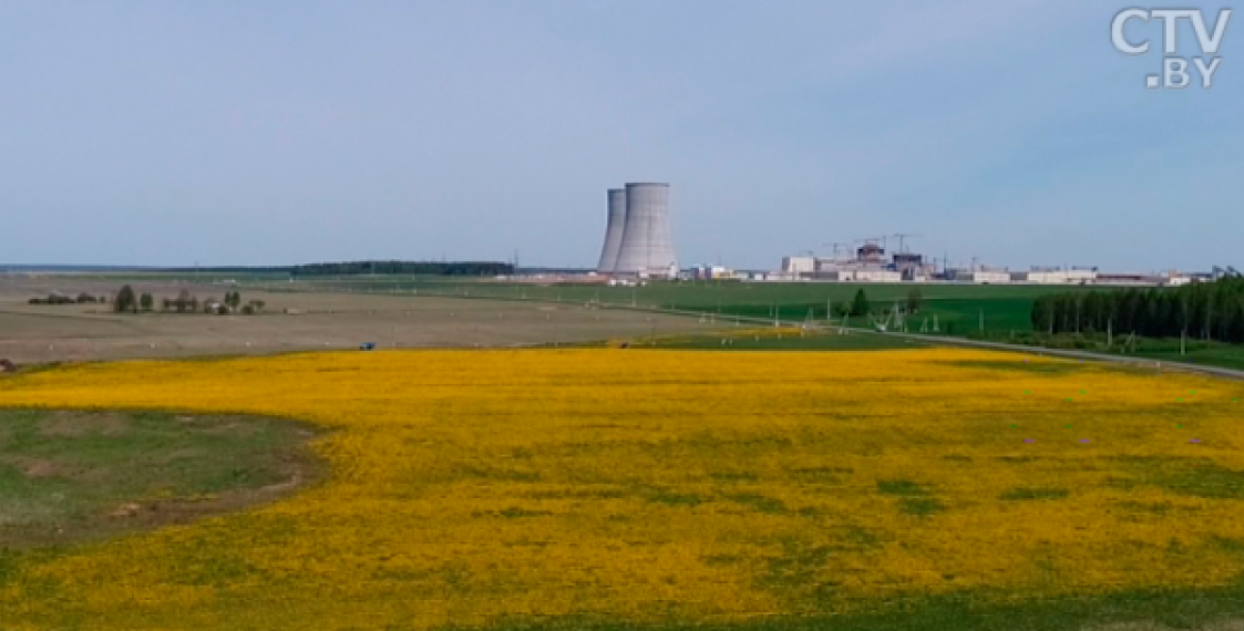 Poland not to buy energy from Belarusian NPP