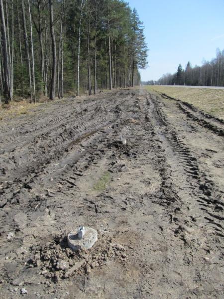 На трассе Минск-Гродно украли... 98 столбов