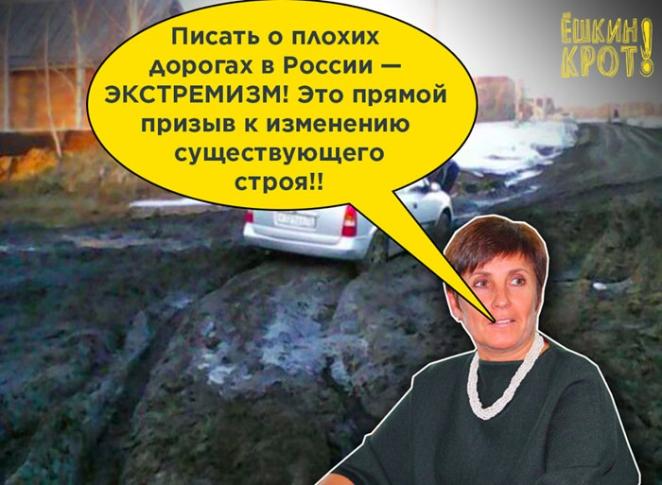 Жительница Омской области пожаловалась на плохие дороги. Ее обвинили в экстремизме