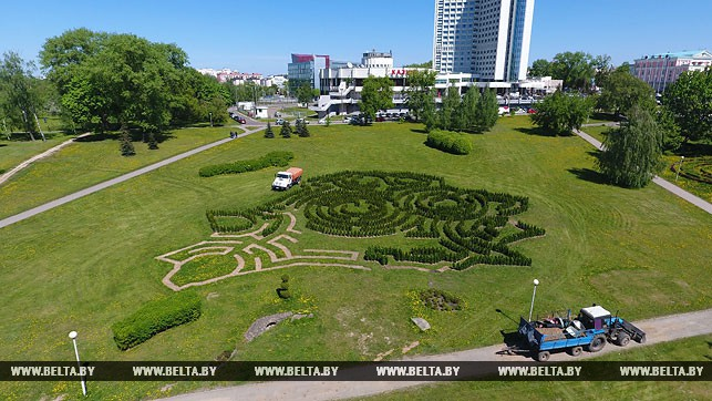 3,000 Bushes! Labirynth In Form Of Belarus' Map Planted In Minsk