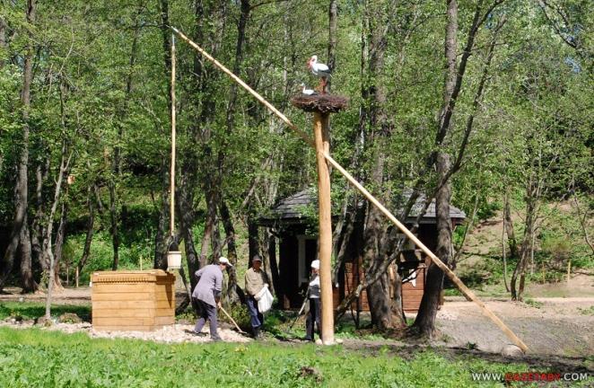 Обновки на малой родине Лукашенко: деньги вновь потекли рекой