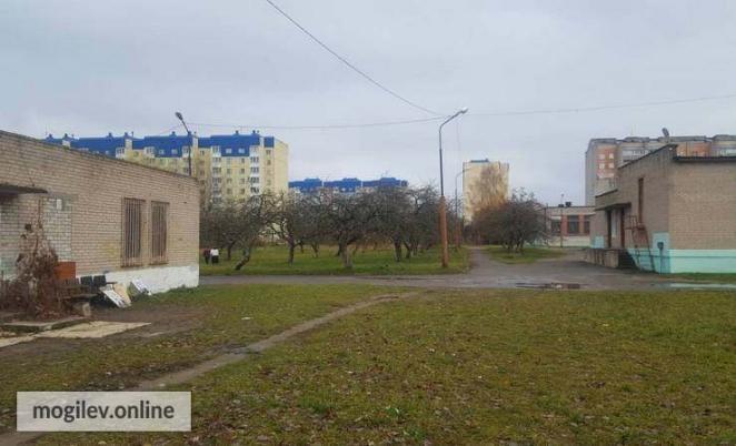 В могилевской школе на помойку выбросили два портрета Лукашенко