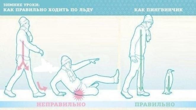 """Синоптики предупреждают о гололедице. Пора ходить """"пингвинчиком""""!"""