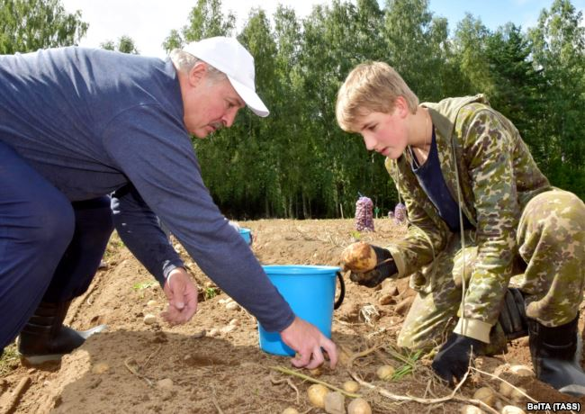 Spuds 'N Speculation: Lukashenka Gifts Potatoes To Putin Amid Integration Rumors