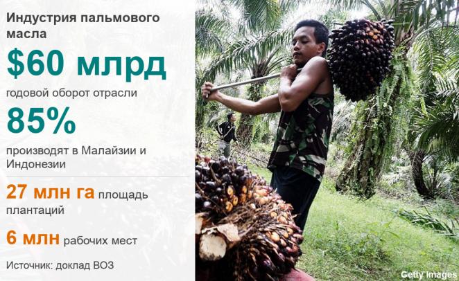 Пальмовое масло опасно. Врачи и ученые готовы рассказать об этом всему миру